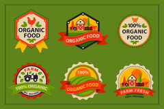 Flat style of bio organic eco healthy food label logo template and vintage vegan farm element in orange green color Stock Image