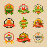 Flat style of bio organic eco healthy food label logo template and vintage vegan farm element in orange green color Royalty Free Stock Photography