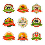 Flat style of bio organic eco healthy food label logo template and vintage vegan farm element in orange green color Stock Photography