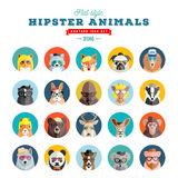 Flat Style Hipster Animals Avatar Vector Icon Set for Social Media or Web Site. Fauna Portraits. Mammals Faces. Royalty Free Stock Image