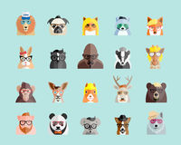 Flat Style Hipster Animals Avatar Vector Portraits or Icon Set for Social Media, Web Sites, etc. Royalty Free Stock Images
