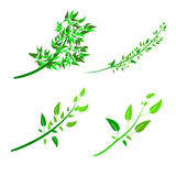 Flat style vector illustration for drawing shrubs, trees, seedlings. Royalty Free Stock Images