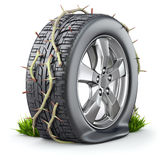 Flat tire and branch with long thorn Stock Image