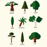 Flat trees set Stock Photography