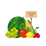 Flat vector agriculture organic food vegetable fruit vitamin mix Royalty Free Stock Images