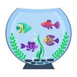 Flat vector aquarium Royalty Free Stock Photo