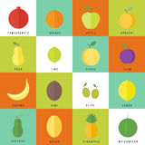 Flat vector elements for web design fruits and berries Stock Photos