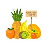 Flat vector fresh fruit: pineapple persimmon kiwi banana melon Stock Images
