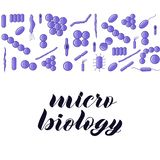 Purple bacterias. Micro biology hand lettering. royalty free illustration