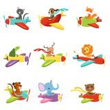 Flat vector set with cute animals flying in colorful airplanes. Cartoon characters of domestic and wild creatures. Collection with cute animals flying in Royalty Free Stock Images