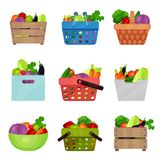 Flat vector set of wooden boxes, bowl, containers, shopping and picnic baskets with fresh vegetables. Natural and. Set of wooden boxes, bowl, containers Royalty Free Stock Photography