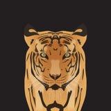 Flat vector tiger Stock Image