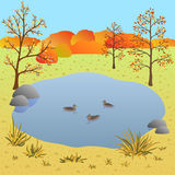Flate autumn landscape, lake with ducks, vector illustration. Flate autumn landscape, lake with ducks. Art vector illustration for you design Stock Photo