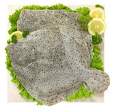 Flatfish. With lemon and salad on marble plan Royalty Free Stock Photo