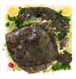 Flatfish. On marble plan with salad and lemon Royalty Free Stock Photography