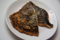 Flatfish Royalty Free Stock Image