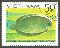 Flatfish, Peacock Sole. Vietnam - stamp 1982, Multicolor Edition Marine Fauna, Series Fish  Soles and Flatfish, Peacock Sole, Pardachirus pavoninus Stock Photography