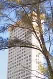 Flatgebouw met Boom in Voorgrond Stock Afbeelding