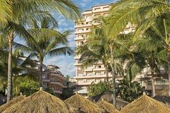 Flatgebouw met koopflats met palmen stock fotografie