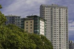 Flatgebouwen onder de grote bomen van Vancouver stock foto's
