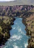 flathead река rapids Стоковые Фотографии RF