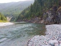 Flathead flod montana Arkivbilder