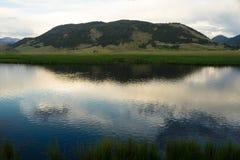 Flathead liten vik Miller& x27; s-Butte Jackson Wyoming Arkivbilder