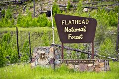 Flathead National Forest. Wooden Sign. Forest Service. Department of Agriculture. Montana, United States of America Royalty Free Stock Photos