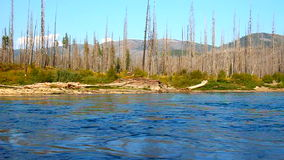 Flathead River in Montana stock footage