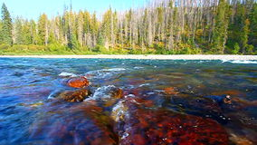 Flathead River of Montana stock footage