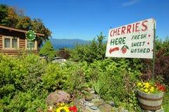 Flathead sjö Cherry Stand Arkivfoto