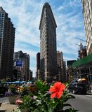 Flatiron building in NYC in summer of July 2015 stock image