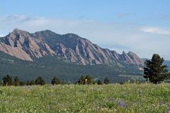 The Flatirons Royalty Free Stock Photography