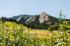 FlatIrons rockowej formaci głaz Kolorado Obraz Royalty Free