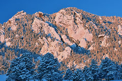 Flatirons Snow Flocked Royalty Free Stock Photography