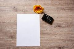 Flatlay假日/travel题材有与照相机、护照、壳、海星和花的棕色背景 免版税库存照片