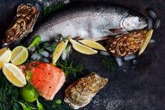 flatlay 新鲜的海鲜的构成在黑暗的背景的 鳟鱼和牡蛎用草本和柠檬 图库摄影