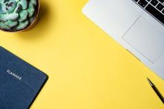 Flatlay av arbetsstället försilvrar den secculent växten för bärbara datorn och blå org arkivfoto
