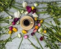 Flatlay dei fiori della molla e della tazza di caffè nero su fondo di marmo grigio immagine stock