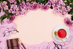 Flatlay frame arrangement with pink chrysanthemum flowers, hibiscus tea, pink scarf, glasses and notebook. Pastel background. Copyspace royalty free stock image