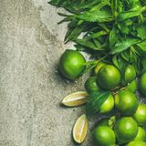 Flatlay of freshly picked limes and mint, square crop Stock Photography