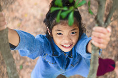 Flatlay Little girl have fun playing climb tree. And stare up Royalty Free Stock Photography