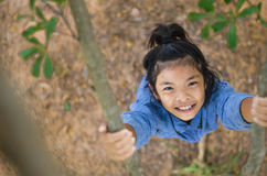 Flatlay Little girl have fun playing climb tree. And stare up Stock Photography