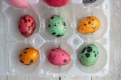 Flatlay mångfärgade påskägg i äggen för packecolorfullvaktel arkivbild