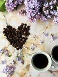 Flatlay med lilan två koppar och kaffebönor Fotografering för Bildbyråer