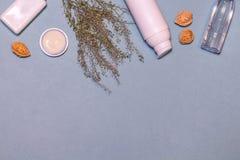 Flatlay met organisch schoonheidsmiddel Stock Afbeelding