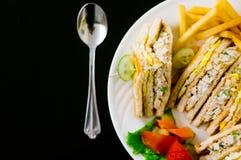 Flatlay sandwich, fries, salad Royalty Free Stock Image