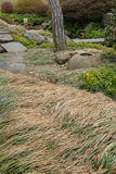 Flattened Ornamental Grasses Royalty Free Stock Photos