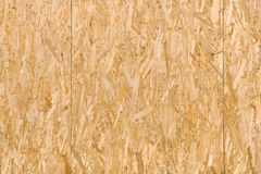 Flattened Wooden Shavings Texture Stock Image