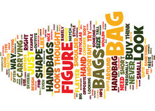 Flatter You Figure With The Right Handbag Text Background  Word Cloud Concept Stock Photography